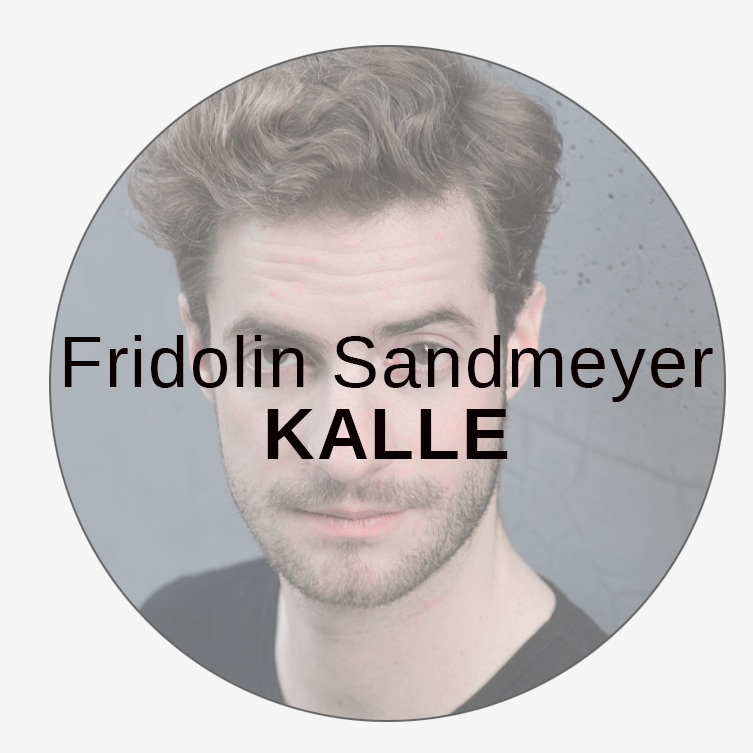 Fridolin Sandmeyer, WP FILMS